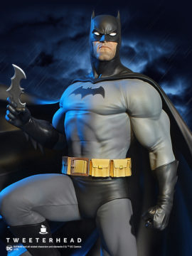Batman Super Powers Series