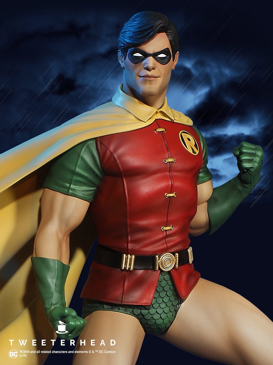 Robin Super Powers Series